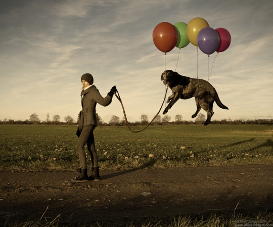 (Really) Funny Photo Manipulations