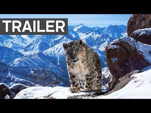 Watch the Trailer for the Most Expensive Wildlife Documentary Ever Made