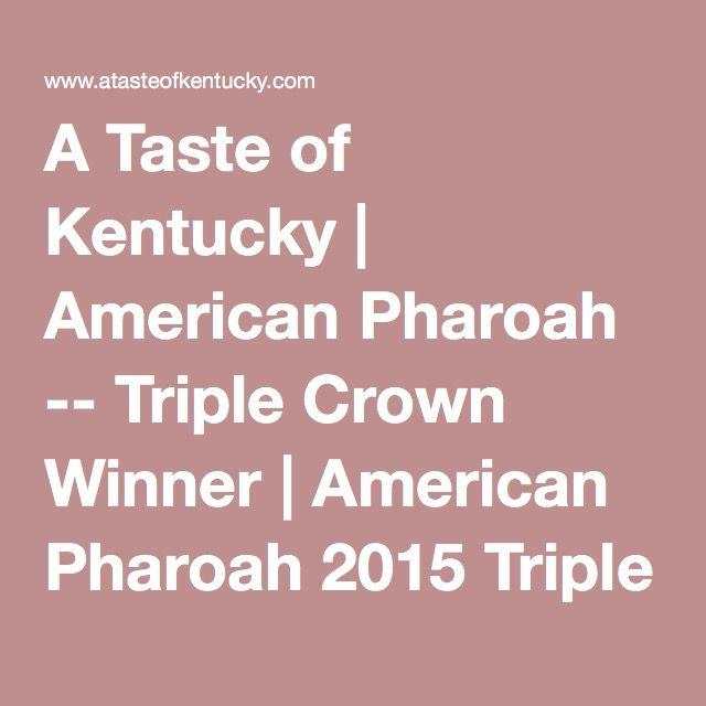 The 25+ best American pharoah ideas on Pinterest | Triple crown ...