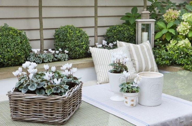 schöne Dekorationen in Weiß im kleinen Shabby Garten