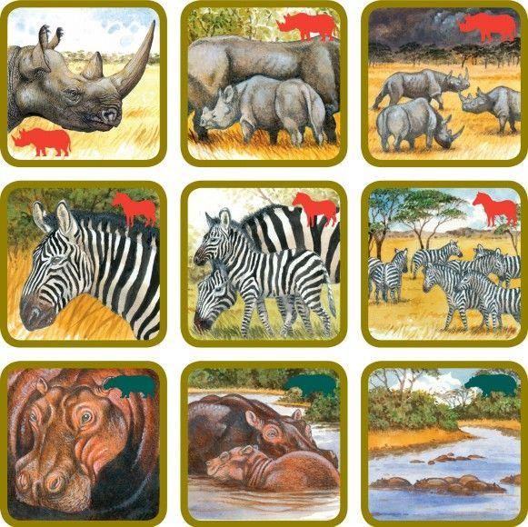 betexa, pexetrio, naučné karty, kreativní hra, zvířata africké savany