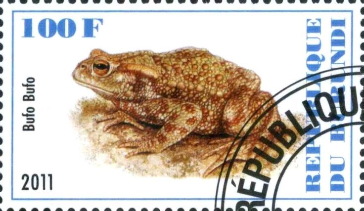 Stamp: Bufo Bufo (Cinderellas) (Burundi) Col:BI 2011-36/1