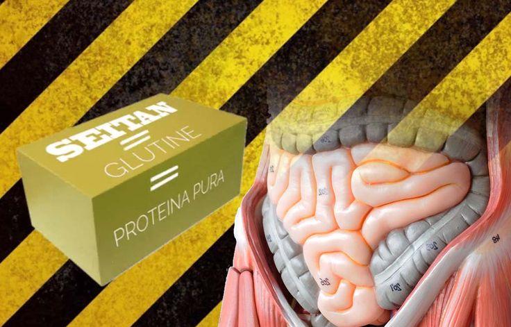 """Scopri  il video """"Seitan: il veleno vegano? [Il video che devi vedere prima di mangiare il seitan]  http://www.miglioriamoci.net/seitan-video/"""