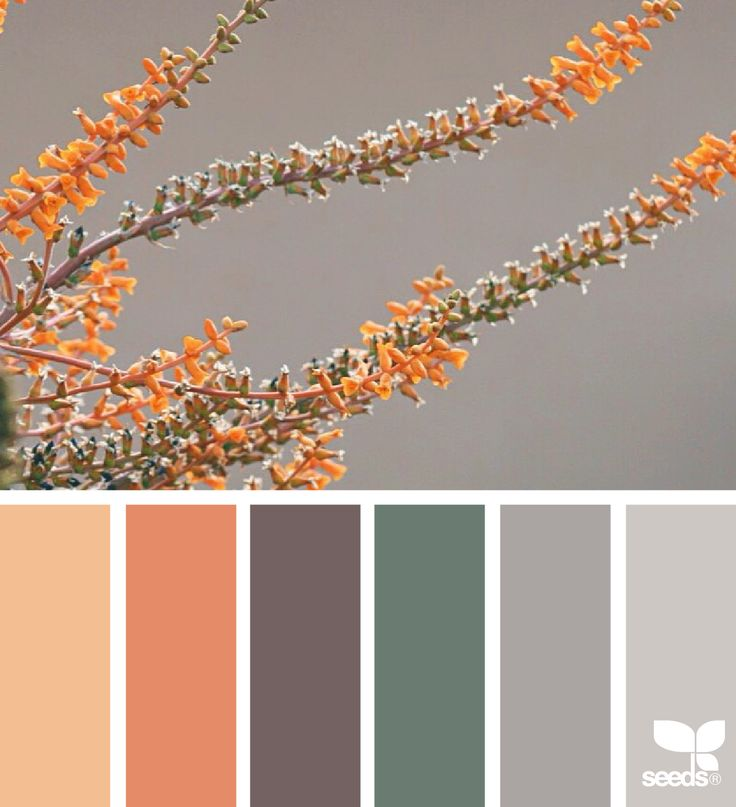 { color nature } image via: @carolyn.eve
