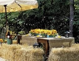 outdoor farm party: Tables Sets, Birthday Parties, Fall Parties, Hay Bale Seats, Summer Parties, Outdoor Parties, Parties Ideas, Tables Runners, Outdoor Tables