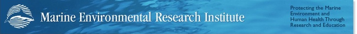 Marine Environmental Research Institute: This is a great organization based out of Blue Hill, ME that does some very important research ranging from watershed monitoring to assessing the build up of toxins in the blubber of seals along the coast (which can be related to what's building up in our bodies!)
