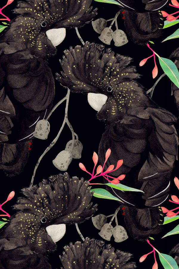 pattern #black #background #flowers