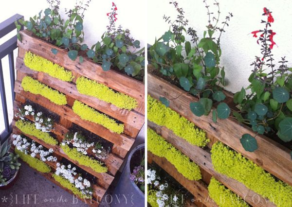 Vertical garden with a pallette! via curbly.com by @Capree Kimball: Gardens Ideas, Pallets Gardens, Pallets Planters, Balconies, Vertical Gardens, Gardens Projects, Pallets Ideas, Wood Pallets, Old Pallets