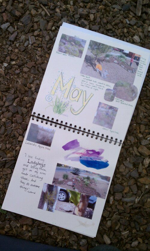 Blogger: CreativeWithKids  made these fantastic garden journals with her children at home. I think it is beautiful how the journal pages have the photo and watercolour, and scribed observations.