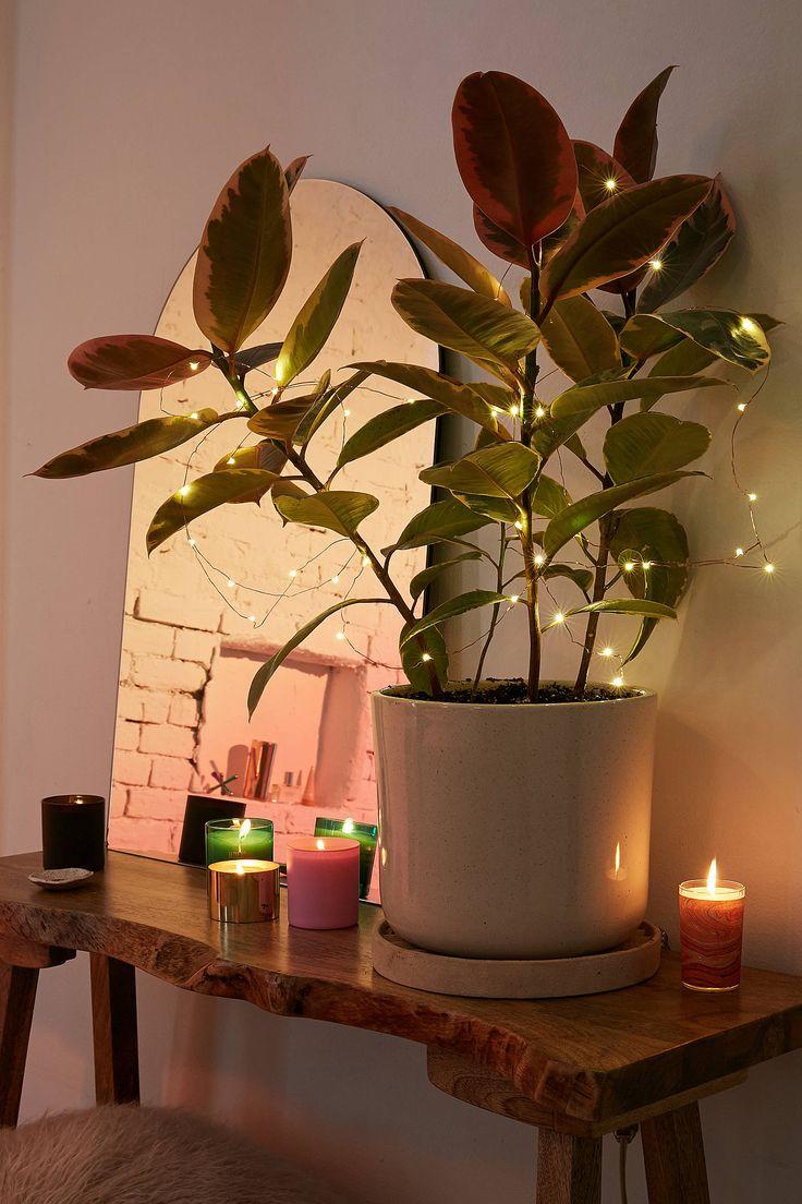Best 25 battery powered string lights ideas on pinterest for Firefly lights urban