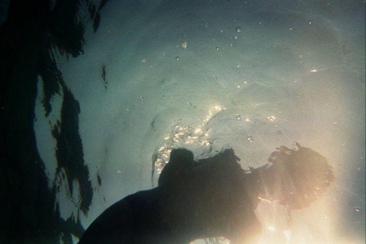 Sea monster Photo - Visual Hunt