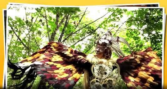 Hey! they stole my bird costume idea! Oregon country fair!