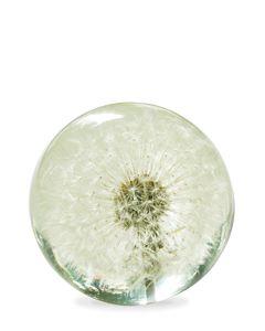 Hafod Grange : Paperweight (Dandelion) | Sumally