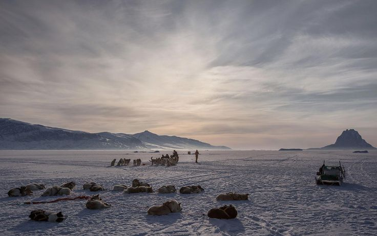 Wintern scene with snow, ice and dogsled in Greenland | Lawrence Hislop Photography