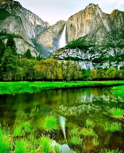 Yosemite Falls.  Such a vibrant green!!