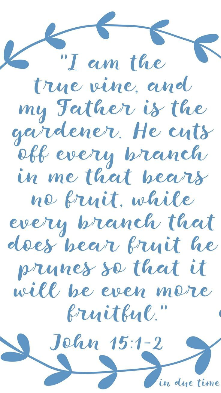 """""""I am the true vine, and my Father is the gardener. He cuts off every branch in me that bears no fruit, while every branch that does bear fruit he prunes so that it will be even more fruitful.""""'"""