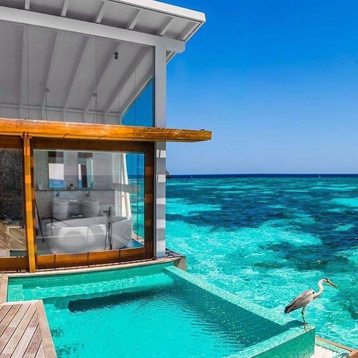 Kandolhu Island Resort in #Maldives by luxurysmallhotels https://instagram.com/p/95elNMSzPb/ #Flickr via https://instagram.com/hotelspaschers #TeamFollowLive