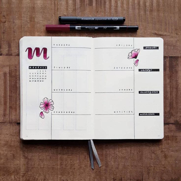 Bullet journal weekly layout, flower drawings, hand lettering.   @contracrastination