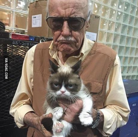 Epic Stan Lee with Grumpy Cat Pic is Epic!