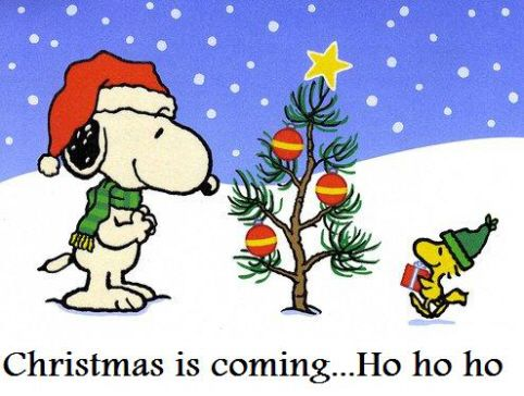 Snoopy and Woodstock Christmas is coming... Ho Ho Ho