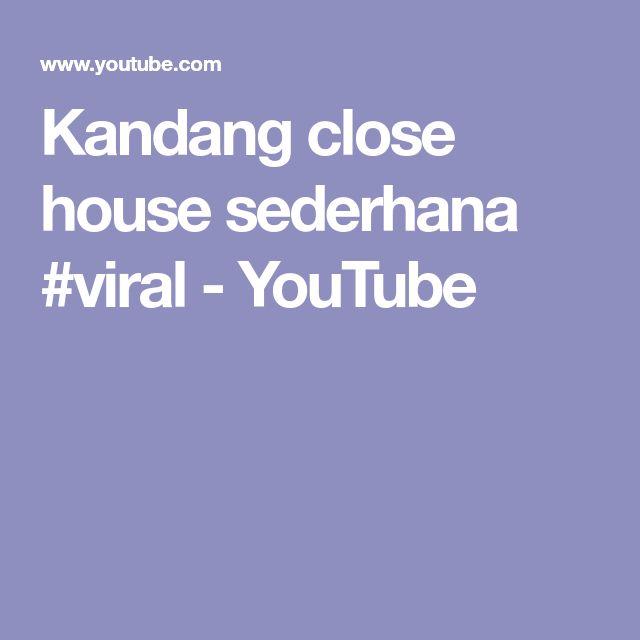 Kandang close house sederhana #viral - YouTube