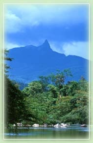 an inside look at the beautiful country of honduras Northeast rehab 10 best drug rehab centers [ northeast rehab ].