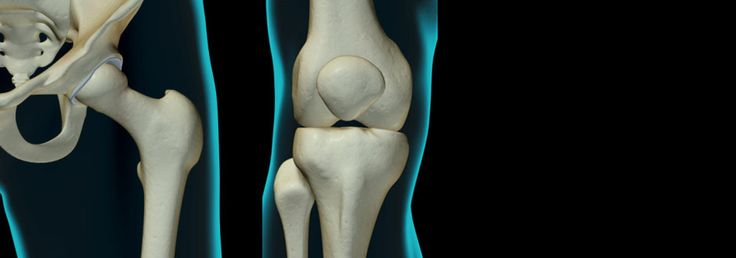 Our team of the most experienced orthopedic hip surgeons offers the best treatment for any injury or disease of the hip bones and joints.