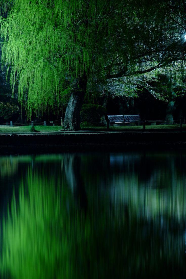 松本城の堀