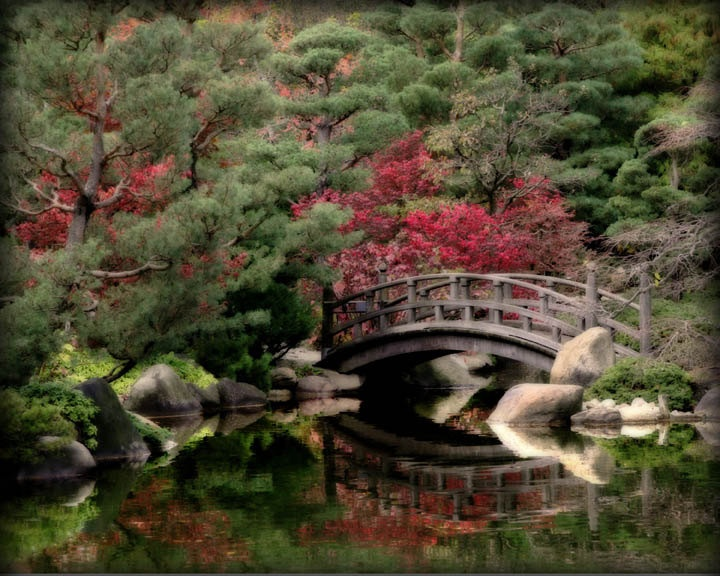 Japanese wooden bridge koi pond reflection art photography for Japanese koi pool