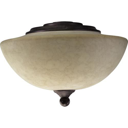Found it at wayfair salon two light bowl ceiling fan light kit