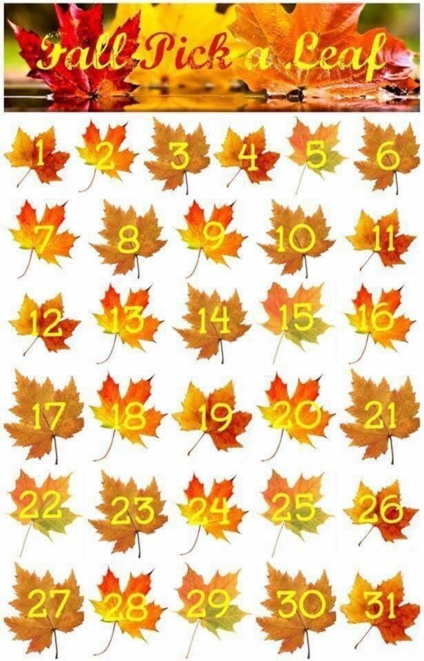It's FALL y'all! I'm doing a giveaway!!! Pick a leaf! Only one person per leaf please ☺️so pick your lucky number (1-31) quickly! I have 3 lucky numbers written down. Whomever picks those lucky numbers will win a Senegence $20 gift certificate to be used in November! Comment below with your number and I will draw on Dec. 1.