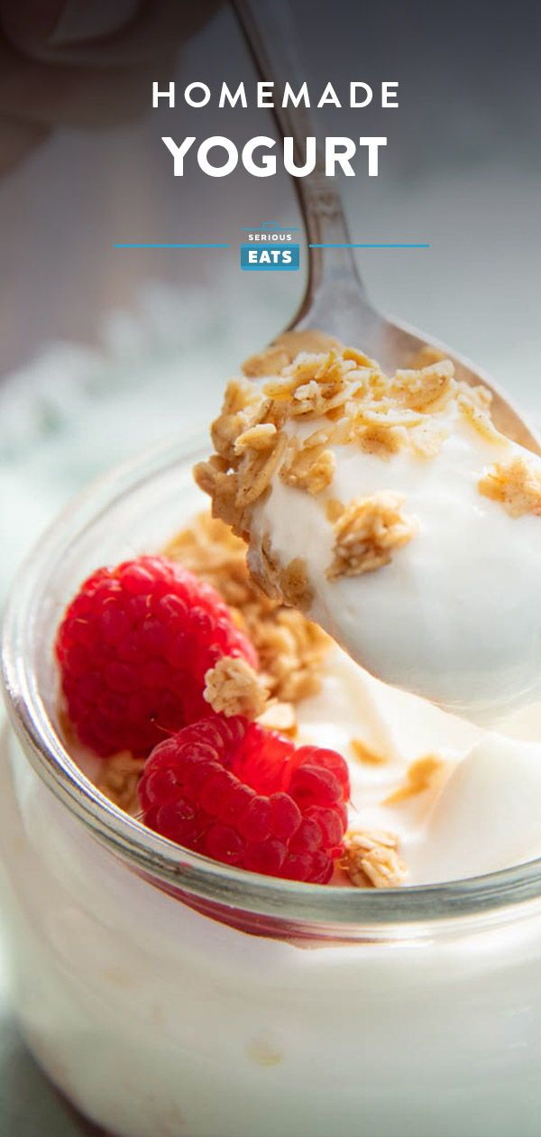 Homemade Yogurt Recipe Recipe Homemade Yogurt Recipes Homemade Yogurt Yogurt Recipes