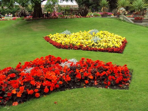 Оформление клумбы. Имея садовый участок, без сомнения, любому садоводу захочется, чтобы он не только приносил пользу, но и выглядел красиво. Одно из главных украшений сада – клумба. Умение красиво оформить клумбу пригодится и тем, кто хочет украсить небольшой газон перед домом или своими силами сделать более приятным вид из окна. Даже если вы не владеете специальными знаниями в области ландшафтного дизайна, вы сможете своими руками уcтроить красивую клумбу, для этого необходимо разобраться…