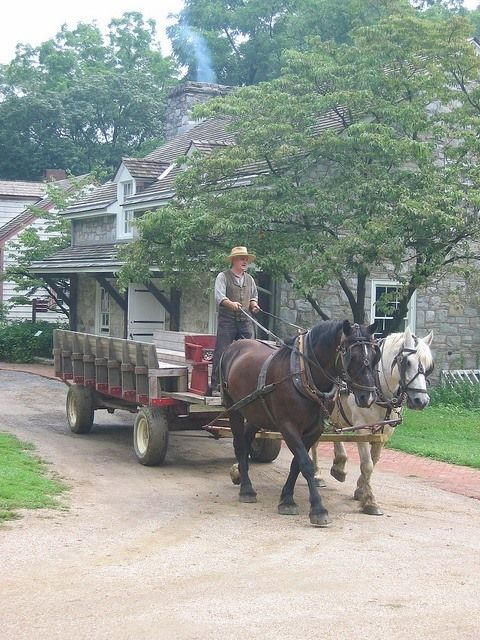 1928 best images about all things amish on pinterest for Amish country things to do