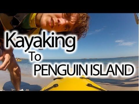 A video of me kayaking to Penguin Island.