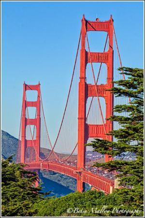 Best ways to checkout golden gate bridge