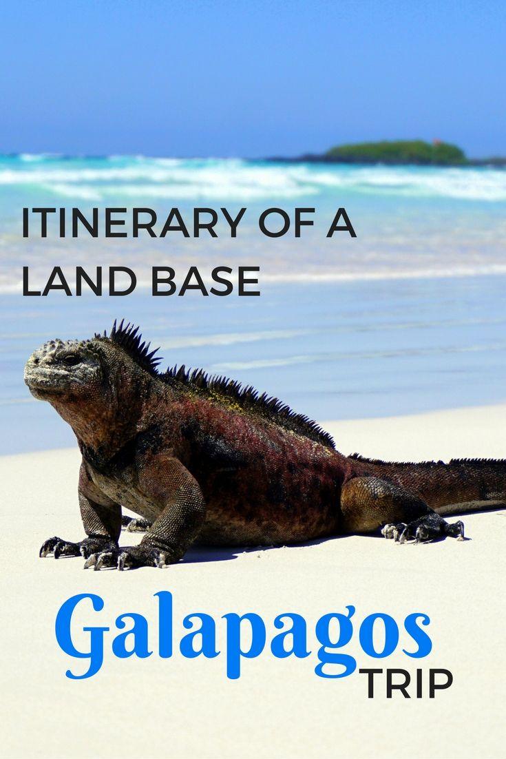 Highlights itinerary of a land based galapagos trip