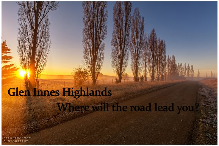Where will the road lead you in the Glen Innes Highlands.  Photo by Jayson Sharman