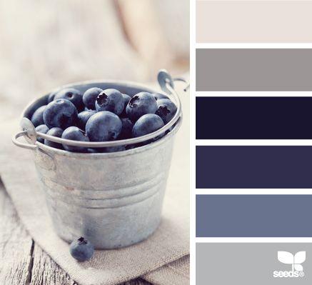 blueberry tones