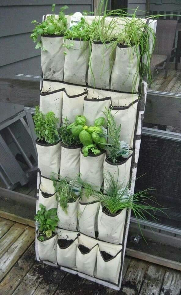 Best 25+ Apartment Herb Gardens Ideas On Pinterest   Herb Garden Indoor,  Indoor Herbs And Diy Herb Garden