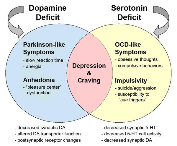 serotonin & dopamine deficiencies
