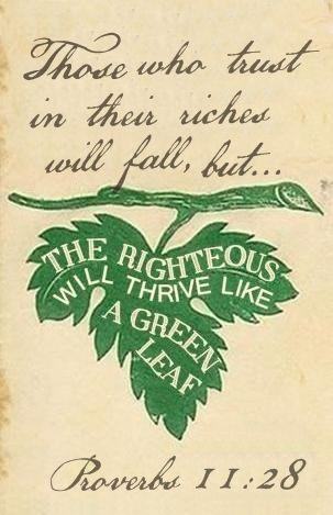 Scripture                               Proverbs 11:28
