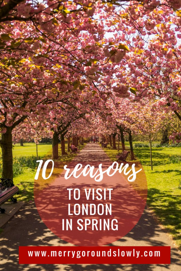 Have you seen London in spring? Go to this city to see blooming parks, get cheaper hotel and ticket deals and fewer tourists. Holland Park | Hyde Park | Regent's Park | Hampstead Heath | Canary Wharf | High Tea | Afternoon Tea | United Kingdom | Nike Running Club | Magnolia | Wisteria | Tulips | Cherry blossom |  St Patrick's Day | Head of the River Race | London Beer Week | Easter in London | London Marathon | Europe | Travel #spring #london #uk #unitedkingdom #travel