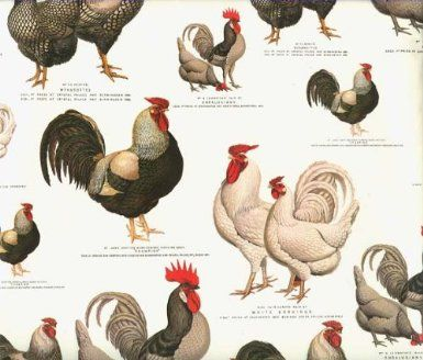 Tassotti Chickens and Roosters Wrapping Paper