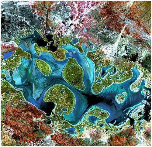 Satellite Image Carnegie, Australia | *it reminds me of a geode or an agate*