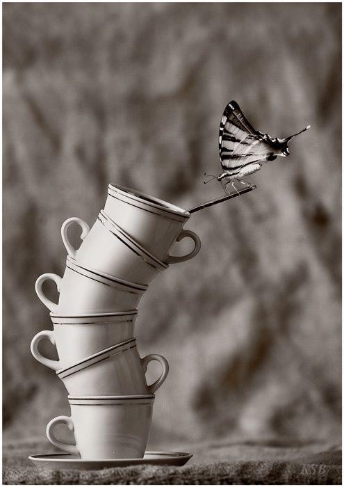 Untitled by Sergey Kuranov, via 500px