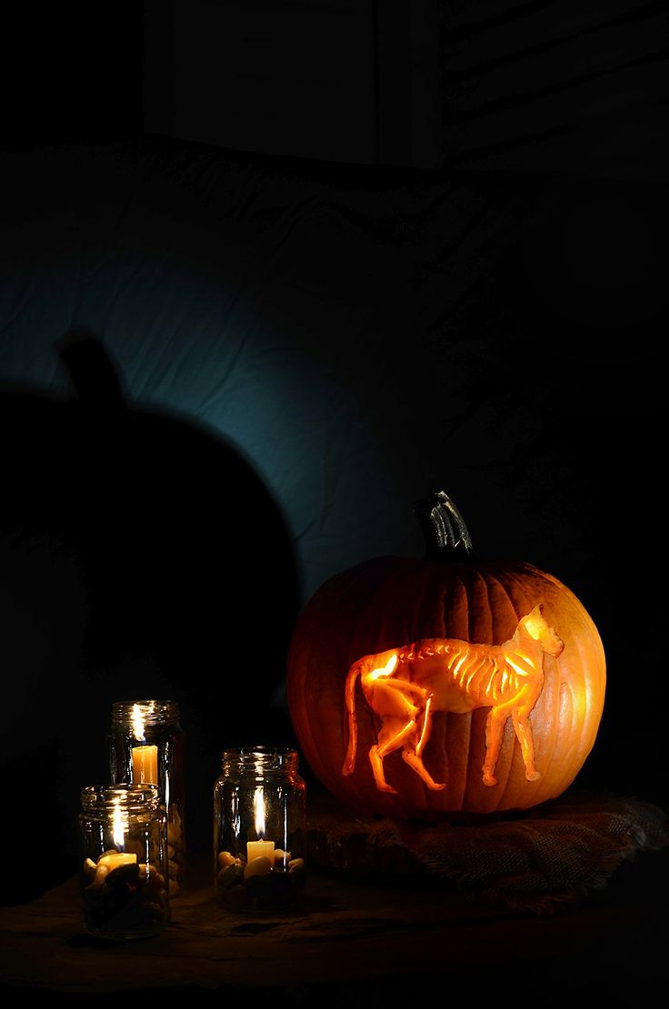 1 697 free pumpkin carving stencils patterns and ideas