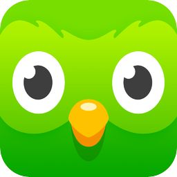 duolingo app icon - Google Search
