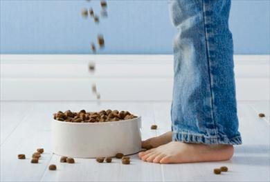 Les tâches ménagères ne sont pas obligées d'être pénibles. Pour d'autres conseils sur la gestion des choses à faire à la maison et plus, visitez P&G au quotidien dès aujourd'hui.