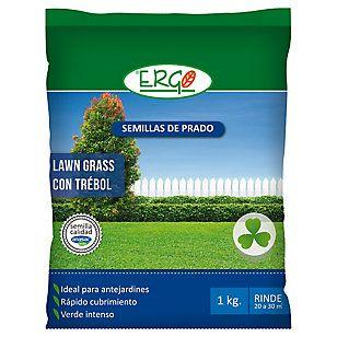 Ergo Semillas Prado Lawn Grass con trebol 1 kilo